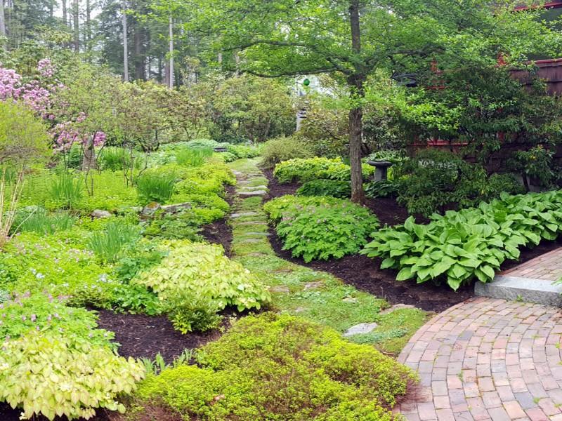 Lush Garden Oasis