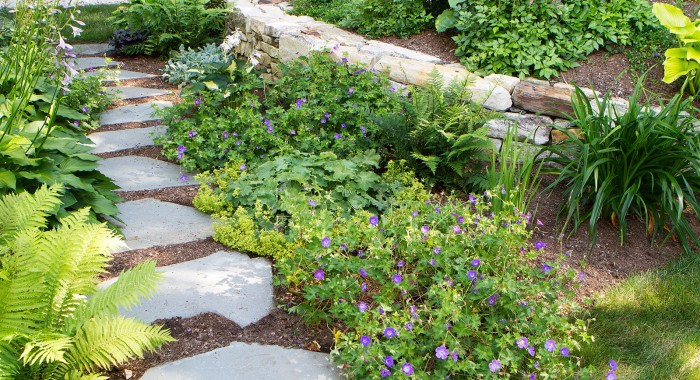 landscaping-plantings-walkway